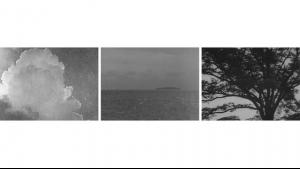 Ways of Ozu