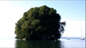 L'Île de la Harpe à Rolle [documentaire] (3m58s)